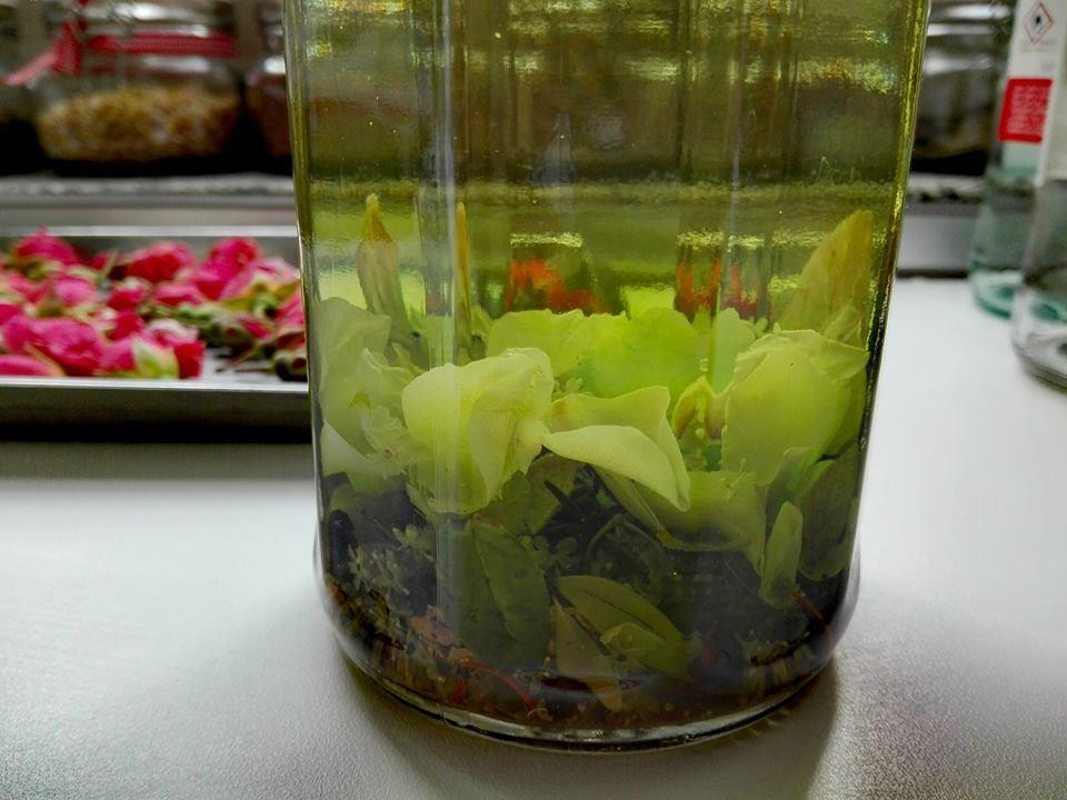 amaro erbe aromatiche e spezie